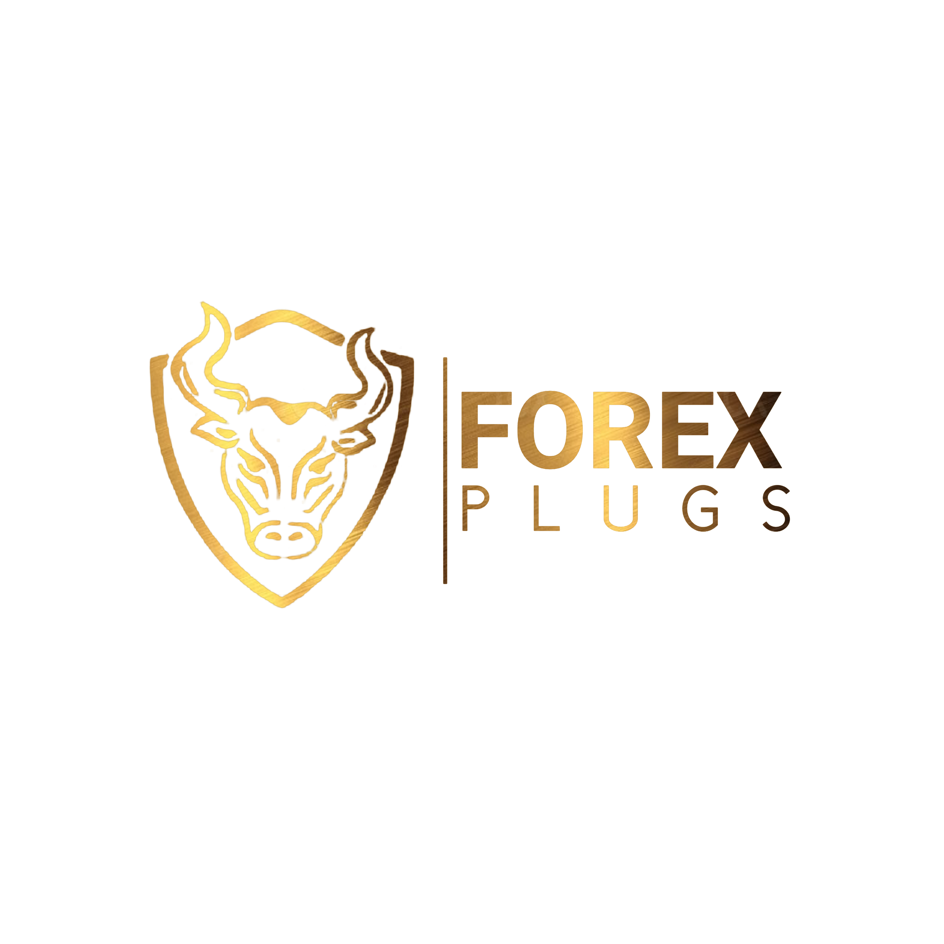 Forex Plugs Masterclass Full Membership MONTHLY Subscription